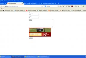 formulario recpatcha